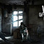 This War of Mine Infographic showcases some interesting stats